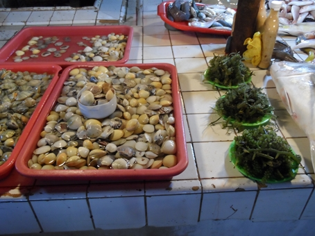 Shellfish and seaweeds in a wet market