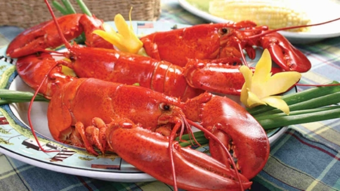 Food Review: Lobster (Global)