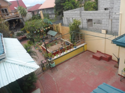 Overview: 8m x 4m pool possible