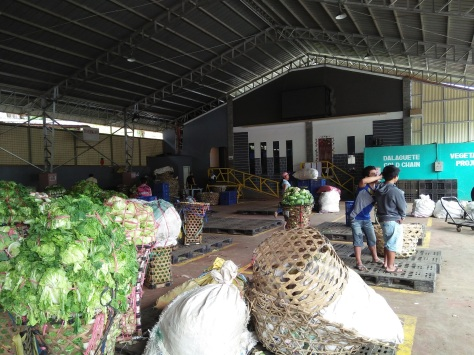 Inside the Veggie Trading Center