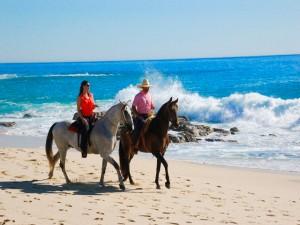 010916 horseback
