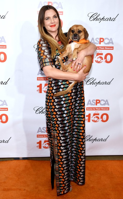 Drew Barrymore at the ASPCA 19th Annual Bergh Ball in NYC
