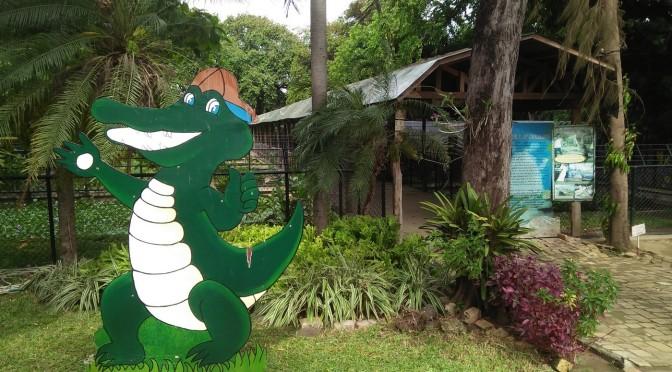 In Pictures: Crocolandia (Talisay City, Cebu)