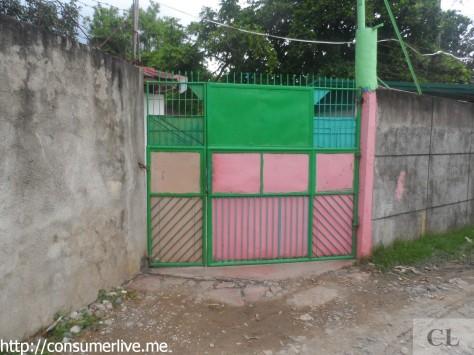 17 parking gate