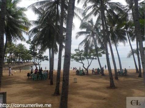 a beach 6