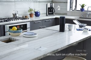 Click the Image to check out Amazon Echo