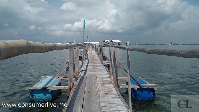 In Pictures: San Vicente Marine Sanctuary (Olango, Cebu)