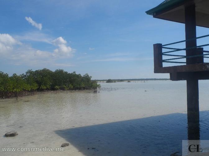 In Pictures: Olango Island Wildlife Sanctuary (Cebu)