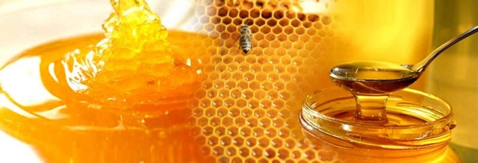 Consumer Info: All About Honey