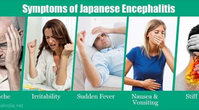 Consumer Info: All About Japanese Encephalitis